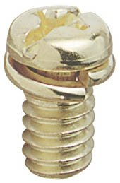 Westinghouse Lighting 7704700 10 Count Brass Motor Screw Kit