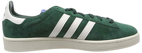 Multicolore green Baskets clowhi Cgreen Adidas Campus cwhite Homme twUBqn8P