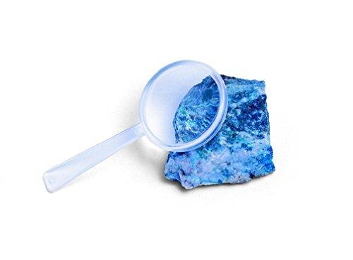 (School Smart Plastic Magnifier Set, 50mm Diameter (Pack of 12))