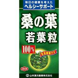 【山本漢方製薬】桑の葉粒 100% 280粒 ×10個セット B003H564UU