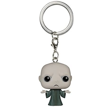 Pocket POP! Keychain - Harry Potter: Voldemort: Amazon.es ...