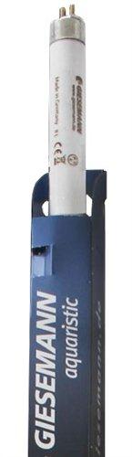 Giesemann AquaBlue Azure 80W 60