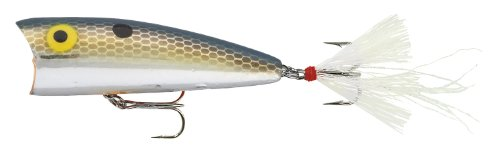 Rebel Lures Magnum Pop R Fishing Lure (3-Inch, Foxy Momma)