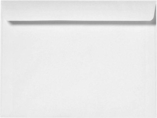 Cashier Depot GF1013NW Booklet Envelopes, Heavy 28 lb, White, 10 X 13, 100 Count 10 X 13