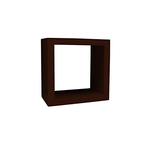 tangerine-art-display-cube-small-decorative-shell-gallery-wall-decor-mahogany-6-inch