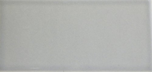 Waterworks Architectonics Field Tile 3 x 6 Bullnose Single (Short) in Gray by Water Works (Image #1)