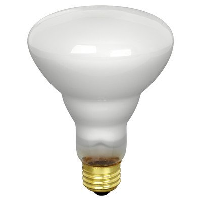 Feit 65BR30/FL/2 2 Pacl 65 Watt Track & Recessed Flood Reflector Light Bulb