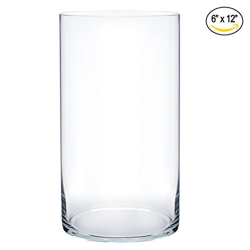Royal Imports Flower Glass Vase Decorative Centerpiece For Home or Wedding by Cylinder Shape, 12