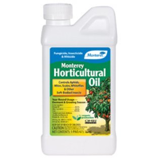 Monterey LG 6294 Monterey Horticultural Oil-Qt-RTS 32oz - Pack of 12 by Monteray