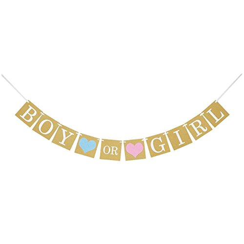 Baby Shower Decorations  Gender Reveal Party Favors Boy or Girl Rustic Banner  Pregnancy Announcement