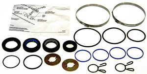 Clamp and Seals 36-351890-ACD ACDelco 36-351890 Professional Steering Gear Pinion Shaft Seal Kit with Bushing