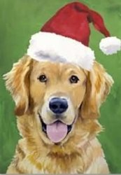 Cheap Best of Breed Golden Retriever Christmas Santa Flag 28 x 40 inches