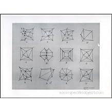 Sol LeWitt : Working Drawings