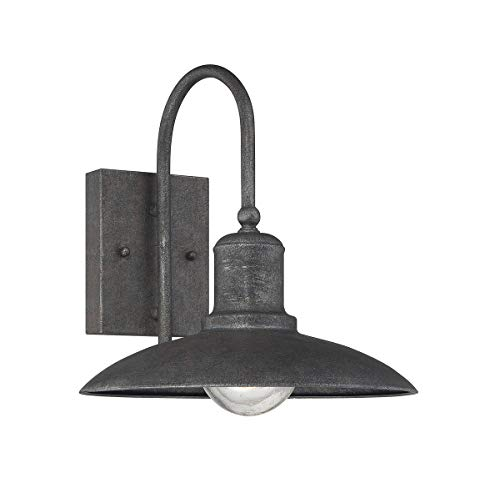 (Savoy House 5-5031-1-32, Mica Wall Lantern, Artisan Rust)