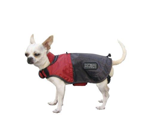 Designer Rain Jacket, X-Small – Colors May Vary, My Pet Supplies