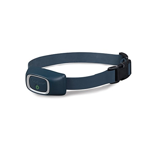PetSafe Lite Add-A-Dog Receiver Collar, Waterproof, Tone / Vibrations / 15 Levels of Lighter Static Stimulation for Timid Dogs for 8 lb.