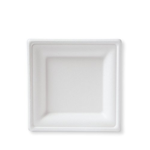 Square White Paper Plates  sc 1 st  Amazon.com & Square White Paper Plates: Amazon.com