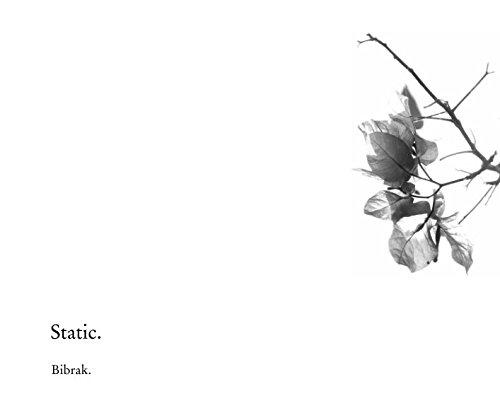 Download Static. ebook