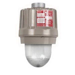 Hubbell Electrical/Killark EZP250 Hostilelite EZ Series Ballast Housing With Globe Support Assembly 250 Watt Baked Powder Epoxy ()