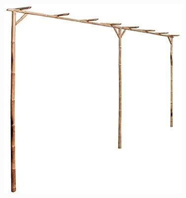 """PROGLEAM Garden Arch, Trellise, Arbor & Pergola, Pergola Bamboo 151.6""""x15.7""""x80.7"""""""