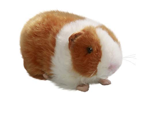 - Carl Dick Guinea Pig Brown, 7.5 inches, 20cm, Plush Toy, Soft Toy, Stuffed Animal 2575001