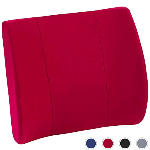 DMI Lumbar Support Pillow for Office or Kitchen Chair, CarSeat or Wheelchair comes with Removable Washable Cover and Firm Insert to Ease Lower Back Pain and Discomfort while Improving Posture,Burgundy (Best Way To Help Lower Back Pain)