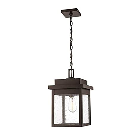 Amazon.com: Millennium Lighting 2665 PBZ - Lámpara de techo ...