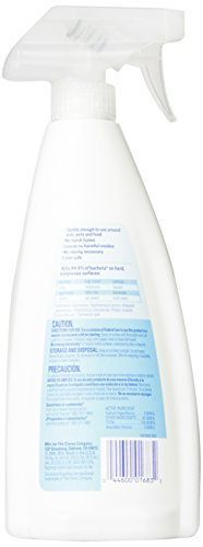4 X Clorox Anywhere Hard Surface Daily Sanitizing Spray, 22 Fluid Ounces (Pack of (Clorox Anywhere Hard Surface Daily Sanitizing Spray)