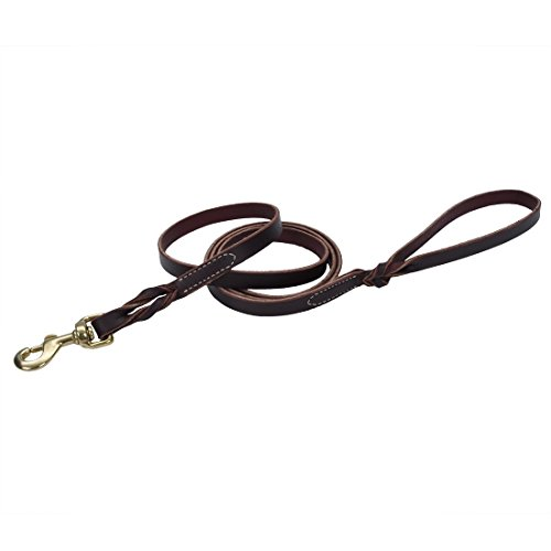Coastal Pet Products Circle T Leather Twist Dog Leash with Solid Brass Hardware, 5/8