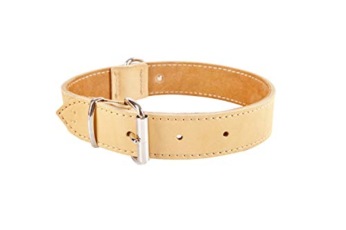 (Dingo Soft Leather Dog Collar with Delicate Padding, Strong and Gentle Handmade Natural 11107)