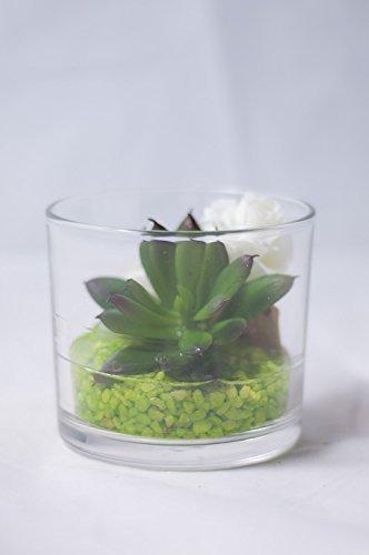 Sukkulente Und Roschen Im Glas Tischgesteck Tischdeko Mit