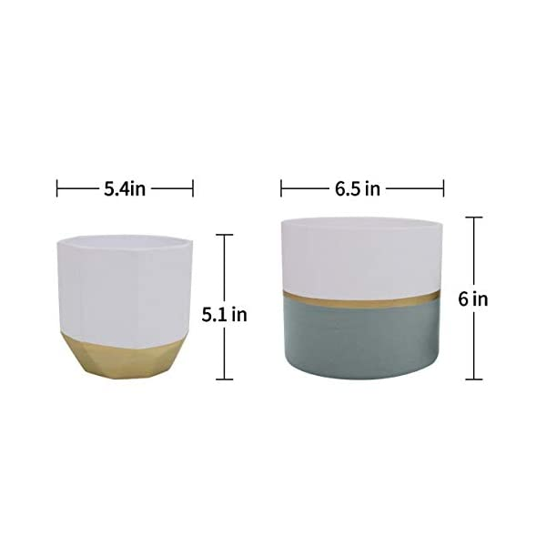 cd568e8ceb LA JOLIE MUSE White Ceramic Flower Pot Garden Planters 6.5″ Pack 2 Indoor  Plant Containers with Gold and Grey Detailing