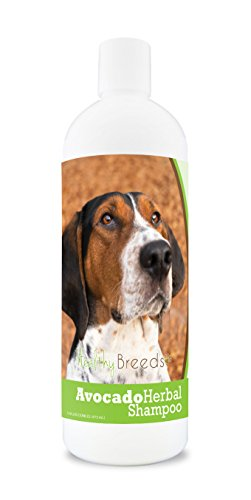 (Healthy Breeds Herbal Avocado Dog Shampoo for Dry Itchy Skin for Treeing Walker Coonhound - OVER 200 BREEDS - For Dogs with Allergies or Sensitive Skin - 16 oz)
