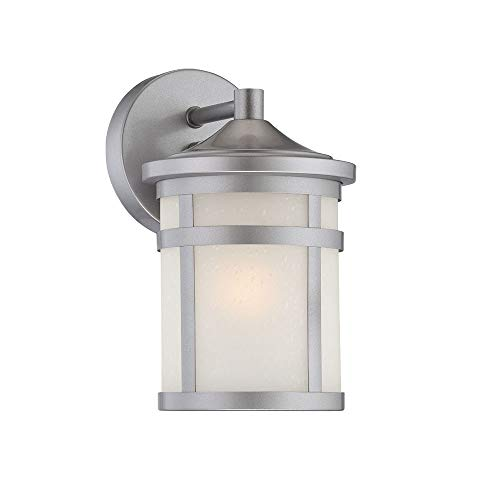 - Acclaim 4714BS Visage Collection 1-Light Wall Mount Outdoor Light Fixture, Brushed Silver