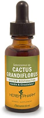Herb Pharm Cactus Grandiflorus Liquid Extract for Cardiovascular Circulatory Support – 1 Ounce