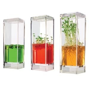 Globus Plantarium Gardenlab Educational Kit