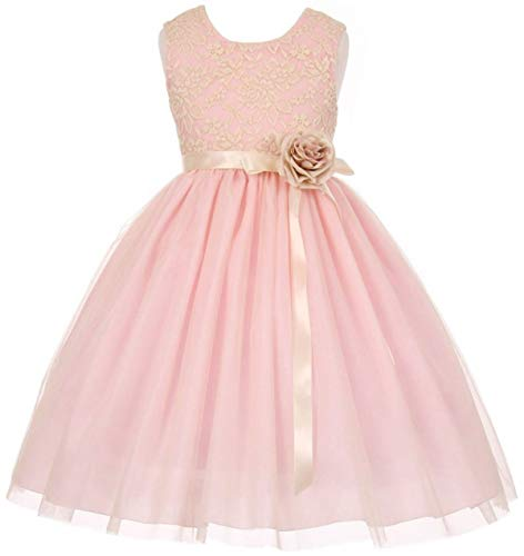 Big Girls' Elegant Contrast 3D Lace Tulle Flower Girl Dress Pink Size 10 (C11C42C)