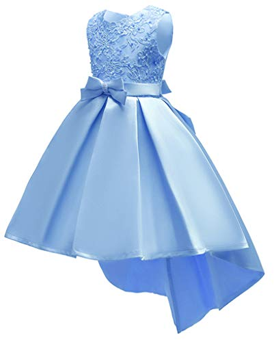 Shiny Toddler Big Girls Pleated Beaded High-Low Applique Embroidered Flower Girl Pageant Dance Party Dress,Babyblue,8-9