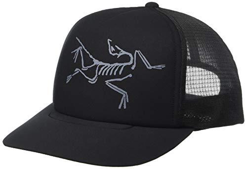 (Arc'teryx Bird Trucker Hat (Black) )