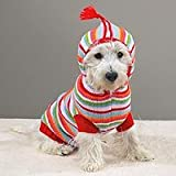 MEDIUM - Striped Hoodie Sweater - BRIGHT STRIPES DOG SWEATER