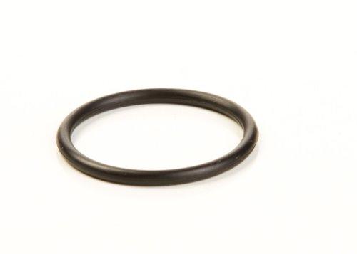 0241 O-ring - 5