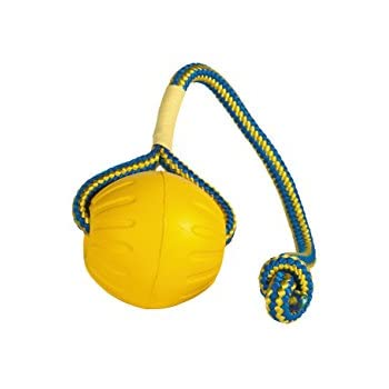 Pet Supplies : Pet Toy Balls : StarMark Everlasting Fun