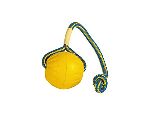 StarMark Fantastic Foam Ball on a Rope Dog Toy, Medium