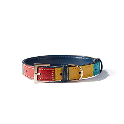 Collar Padded Leather Colorful Medium product image