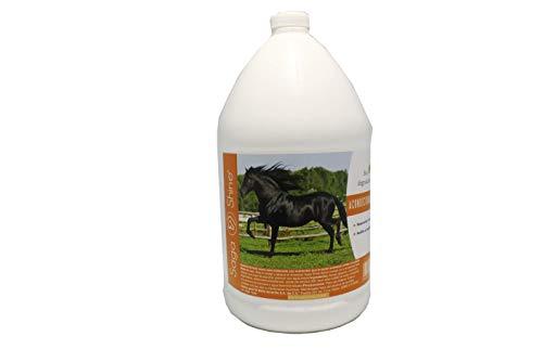 Acondicionador para Crin y Cola del Caballo 4 litros. Da Brillo y sedosidad al Pelo del Caballo