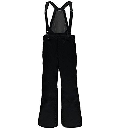 Spyder Tarantula Long Mens Ski Pants - X-Large ()