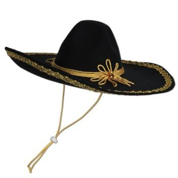 felt sombrero (Felt Sombrero)