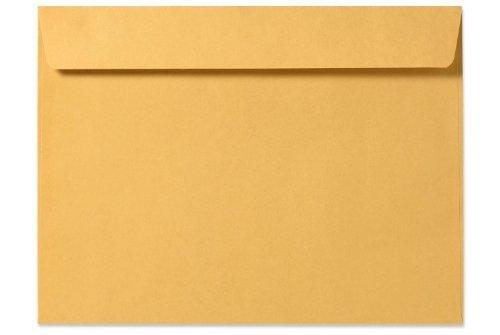 9 X 12 Booklet Envelopes - 28lb. Brown Kraft (50 Qty.) ()