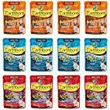 Earthborn Holistic Grain Free Wet Cat Food in Gravy Pouches - 3 Ounces Each - 3 Flavors - Riptide Zing, Autumn Tide, and Upstream Grill (12 Pouches Total)