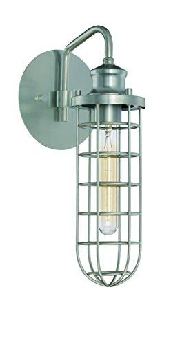 Litex Industries OWS39-RM Single Light Wall Sconce, Metal Fi